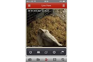 Calving Camera App – Set Up and User Guide